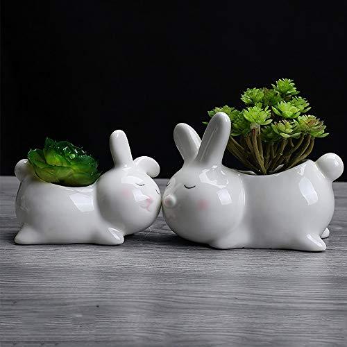 JKXWX Set van 2 stuks Bunny vormige keramische bloempot Leuke Konijn porselein bloempot voor Desktop Home Tuindecoratie, Wit