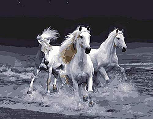 NC56 DIY Erstaunliche galoppierende Pferde Bilder Malen nach Zahlen Digital Canvas Ölgemälde Wohnkultur 40X50Cm Rahmenlos