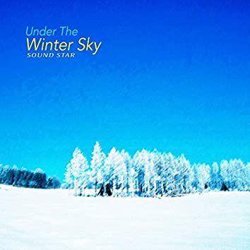 Under The Winter Sky