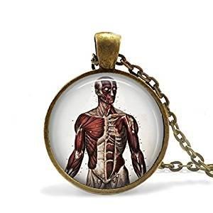 Menschlichen Körper Anatomie Halskette Doctor Geschenk Krankenschwester Geschenk Student Geschenk Echthaar Muskeln Trainer Geschenk Anatomie Halskette Doctor Geschenk