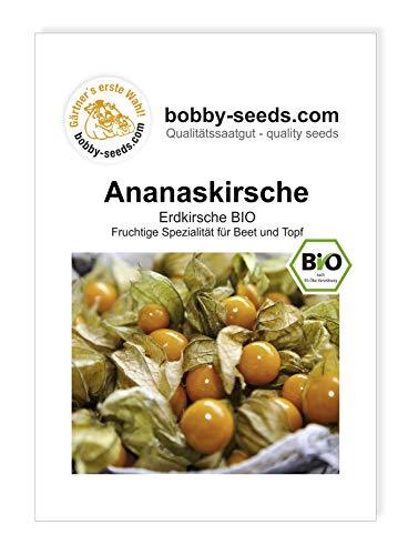 Ananaskirsche - Erdkirsche BIO Samen von Bobby-Seeds Portion