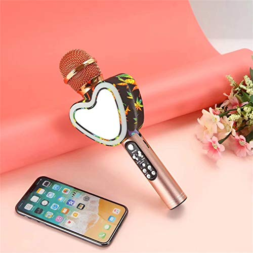 Amazing Deal DYHQQ Wireless Bluetooth Karaoke Microphone, Portable Handheld Speaker for iPhone/Andro...