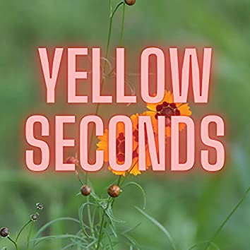 Yellow Seconds