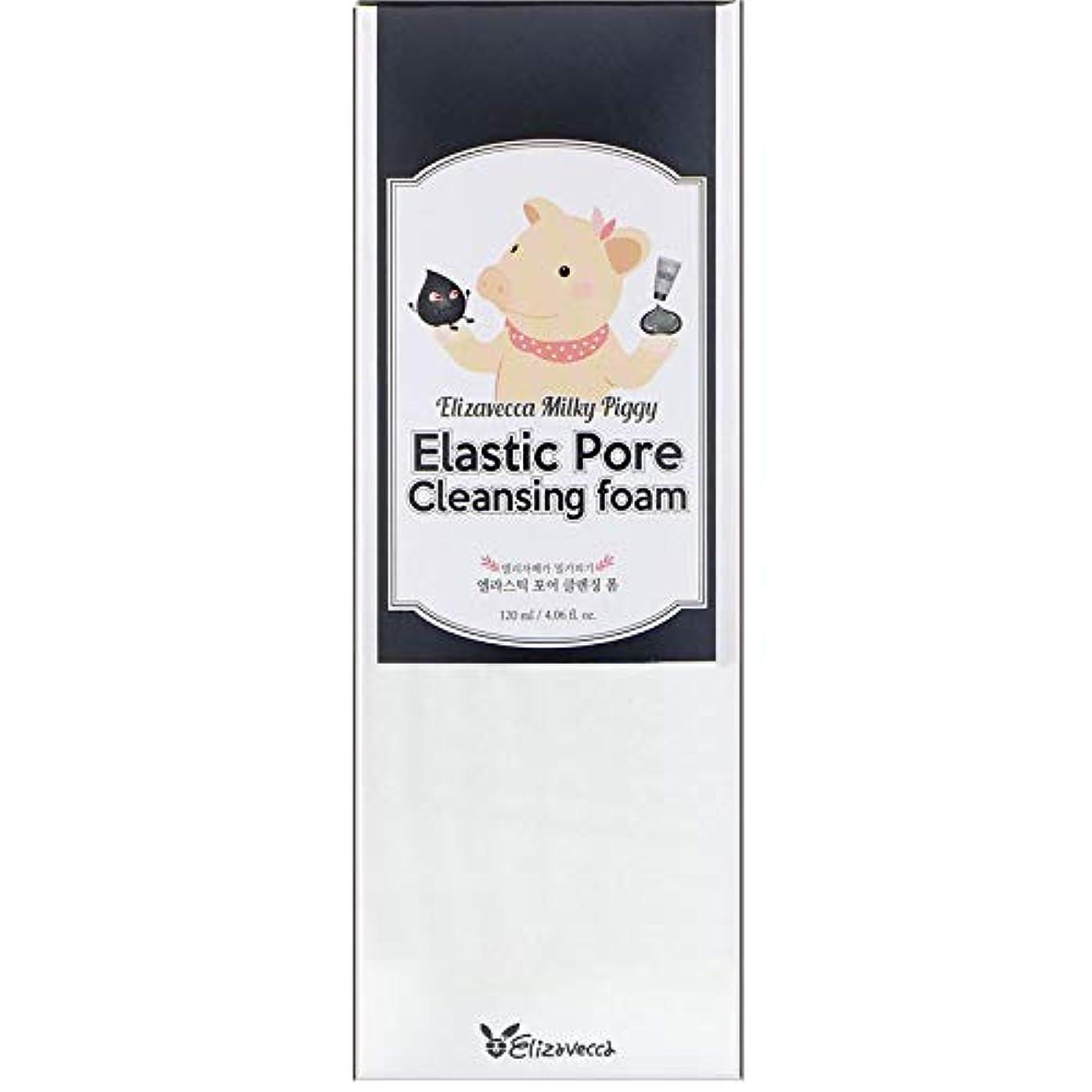 重要性対処にELIZAVECCA Elastic Pore Cleansing Foam (並行輸入品)