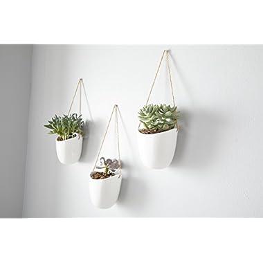 Modern Ceramic Hanging Planters, Succulent Plant Pots, Set of 3