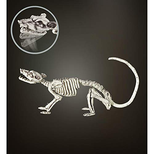Widmann 07090 Rattenskelett, Unisex– Erwachsene, grau, 38 cm