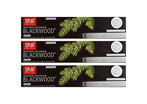 3x SPLAT BLACKWOOD fluoridfreie Kohle Zahnpasta blutstillend und entzündungshemmend