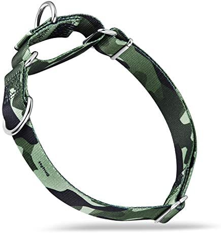 Hyhug Pets Premium Anti Escape Martingale Dog Collar for Pup Dogs Daily Use Walking and Professional product image