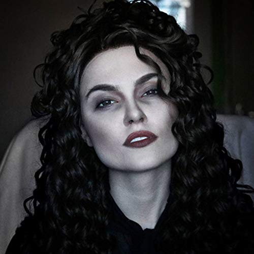 L.W.S Wigs Wigs High Temperature Silk Black Small Curly Long Black Wig Half Hand Hook Front Lace Wig Wigs (Size : 18')