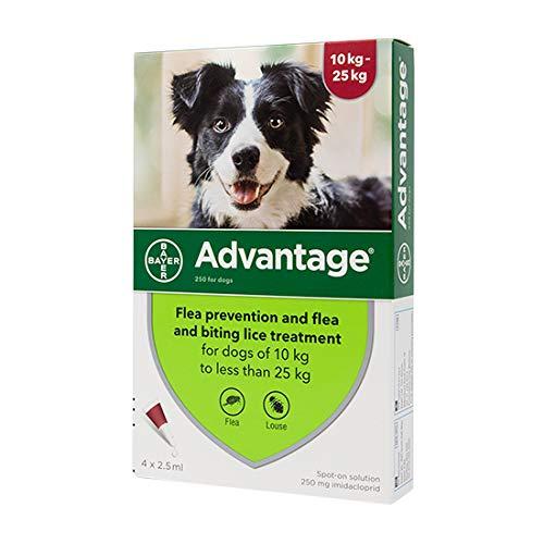 Advantage Spot On Flea Treatment 250 Large Dogs 10-25kg, 4 pipettes