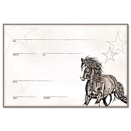 ZAUBERBILD Boxenschild Stallschild Stalltafel Namensschild Pferd 'Tinker' 20x30cm Alu