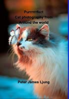 PURRRRRRFECT Cat photography