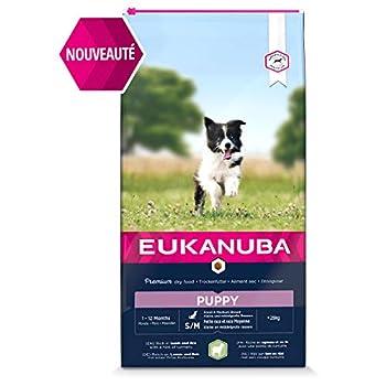 Eukanuba - Croquettes Riches en Agneau et Riz pour Chiots Petite et Moyenne Race - Digestion sensible - DHA et Calcium - Favorise la Croissance - Sans OGM, conservateur, arômes artificiels - 12kg