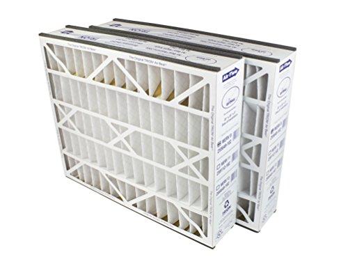 Trion Air Bear 255649-102 (2-Pack) - 20' x 25' x 5' Pleated Air Filter, MERV 8