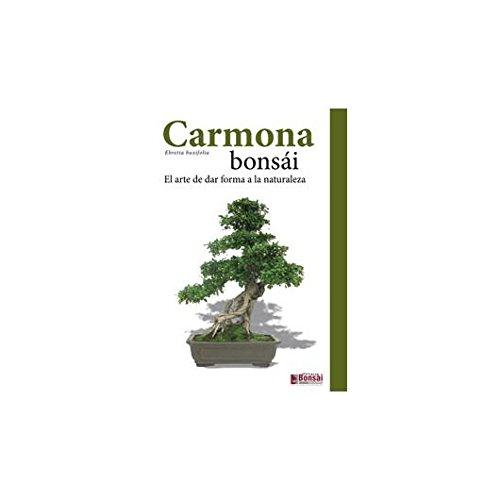Guía Carmona bonsái