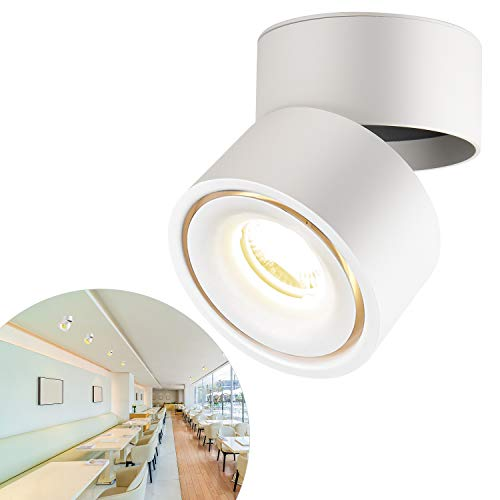 CPROSP 10W LED Spot Runner Aufbauleuchte Deckenleuchte Deckenspots COB Lampe, 360° Drehbar (Natürliches Weiß 4000k), Weiß