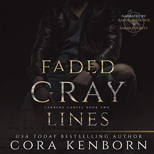Couverture de Faded Gray Lines