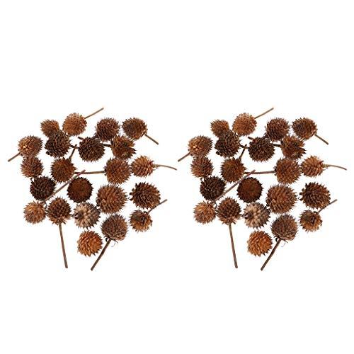 Hellery 100 Mini Fleurs Séchées Fruits Fruits Maison Table Art Floral Mariage Rustique Déco