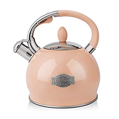 RETTBERG 2.64-Quarts Tea Kettle for Stovetop Food grade stainless steel Teapot with Ergonomic Handle,1 Free Heat-Resistant Cotton Glove (Pink)