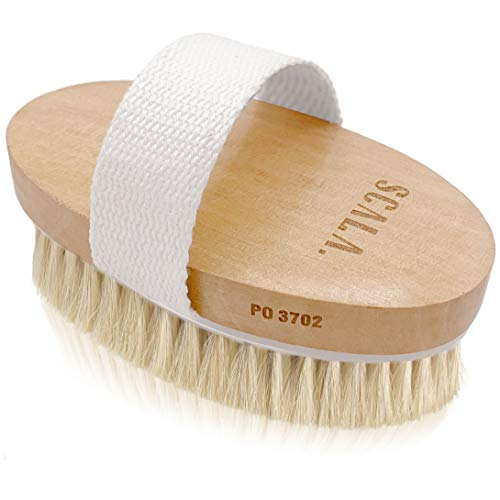 Wet and Dry Body Brush Exfoliator - Soft Bristle Brush Naturally Exfoliates Dead Skin, Smooths Cellulite, Slows Aging, Stimulates Lymph and Blood Flow by Scala Beauty, 5 x 2.75 In