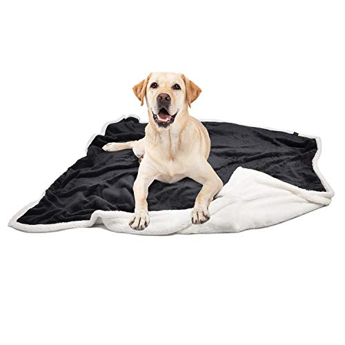 Pawsse Large Dog Blanket