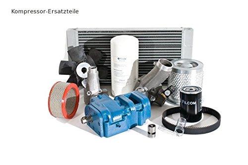 Reparaturkit ASR SCK 61-102, SCR/SCG 60-75 für ALUP Kompressor 212.00195