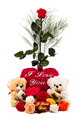 Rosen-Te-Amo – Konservierte echte rote Rose: Unvergängliche Blume mit Grußkarte zum Herunterladen; Infinity Rosen - Deko und Geschenk in neue verstärkte Verpackung - 8