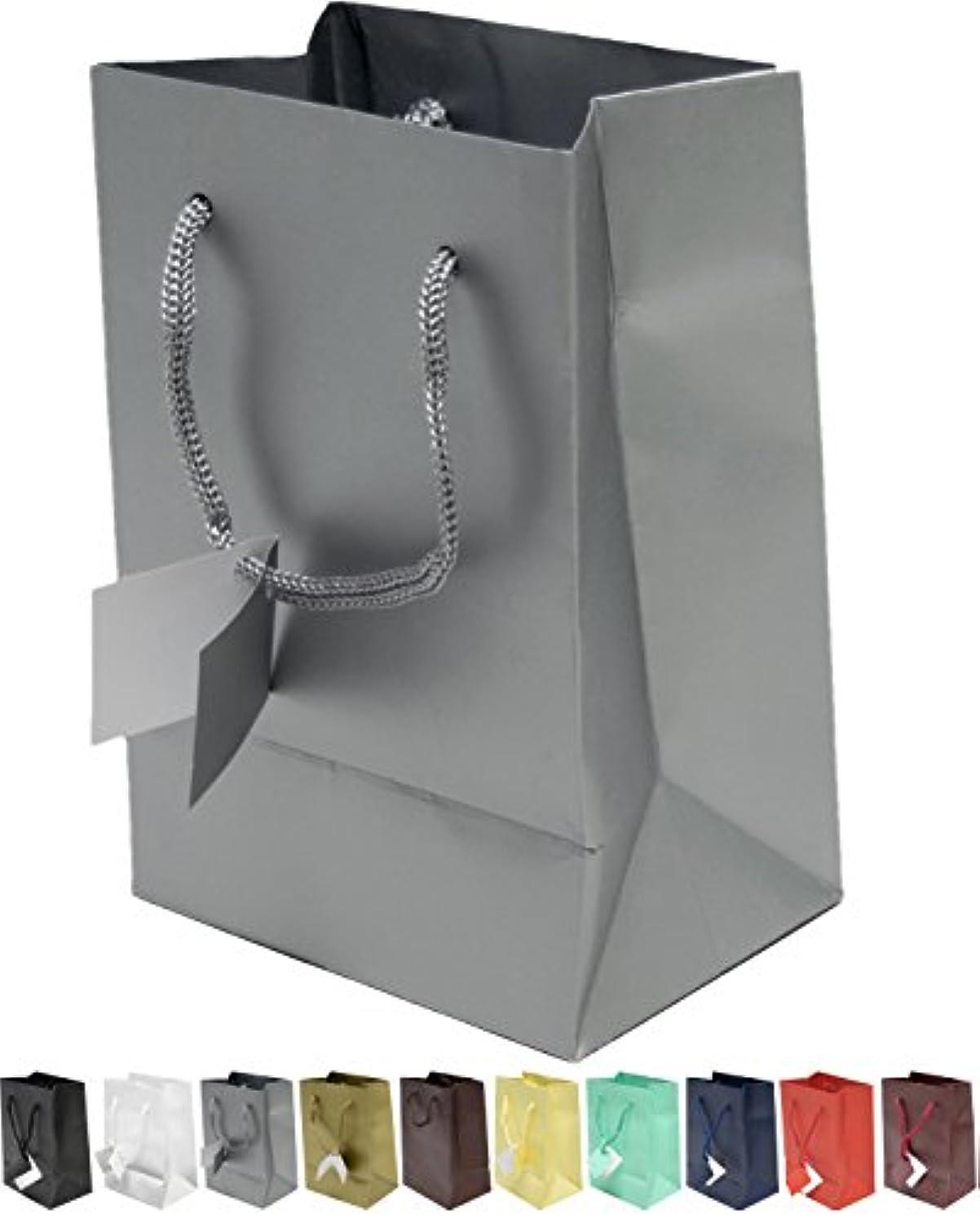 Novel Box? Silver Matte Laminated Euro Tote Paper Gift Bag Bundle 4.75