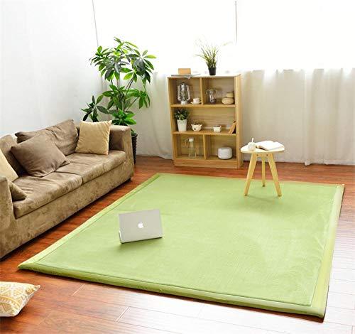 OHHCO Alfombra de refrigeración para sala de estar, dormitorio, ventana, de terciopelo coral, espuma viscoelástica, 200 x 260 cm, para sala de estar (tamaño: 190 x 190 cm)