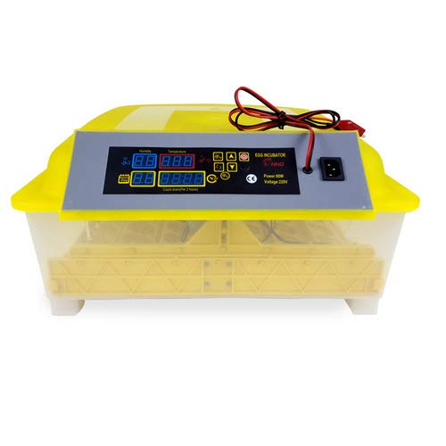 48 Egg Incubator with 12V DC Power Automatic Turning Temperature Control Egg Hatching Machine for Chicken (Yellow)