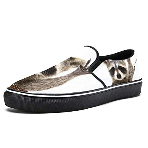 TIZORAX Rocking Racoon mit Gitarre, Slipper, Loafer, Schuhe für Damen und Mädchen, modisch, Segeltuch, flacher Bootsschuh, Mehrfarbig - mehrfarbig - Größe: 39 EU