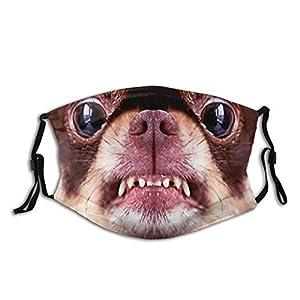 Sciarpa con maschera per cane divertente animale, traspirante e lavabile con 2 filtri, per uomini e donne adulti