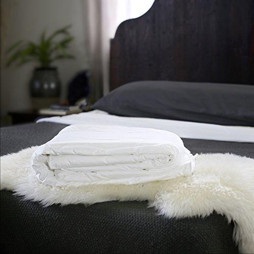 Silk Bedding Direct Mit Seide Gefüllte Bettdecke. Einzelbettgrösse. Sommergewicht. Handgefertigt, Langfaser Maulbeerseide. Hypoallergen. 200cm x 140cm.