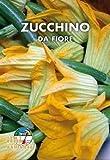 Italsementi Zucchino da Fiore