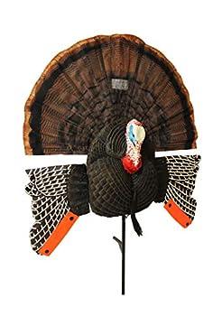 MOJO Scoot-N-Shoot MAX Tom Turkey Hunting Decoy with Realistic Fan