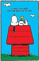 インテリアポスター・プリント-PEANUTS スヌーピー - SNOOPY & WOODSTOCKI Could Lay Hereアート キャンバス絵画 インテリアパネル インテリア絵画 新築飾り 贈り物 サイズ A2(40x60)