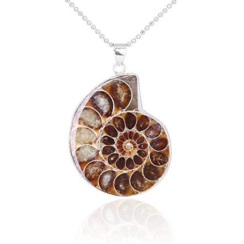 6Wcveuebuc Natural Ammonite Fossils Pendant Jewelry Silver Tone Ammonite Fossils Stone Wrapped Pendant Necklace Fashion Jewelry