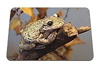 26cmx21cm マウスパッド (カエル爬虫類ブランチ秋) パターンカスタムの マウスパッド