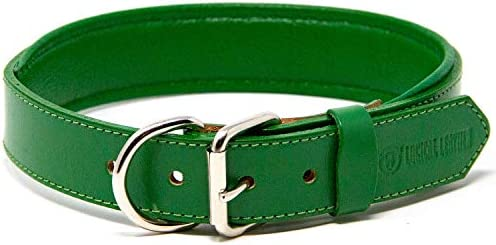 Logical Leather Padded Dog Collar Best Full Grain Heavy Duty Genuine Leather Collar Green Large product image