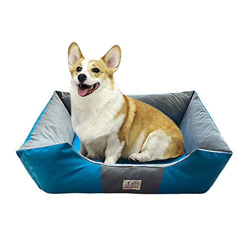 DZL- Cama de Perros y Mascotas Básica Desmontable y Extraíble Regalo Manta Perro Camas para Perros Gatos Alfombra para Mascotas (XL-72 * 92 * 22CM, Azul)