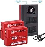 Baxxtar Pro (2X) Ersatz für Akku Panasonic DMW BLC12 E mit Mini 18622 LCD DUAL Ladegerät (Eingang USB-C und MicroUSB)