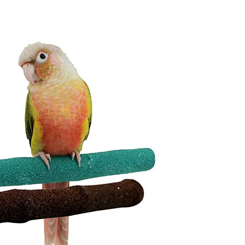 """Borangs Parrot Perches Bird Stand Natural Wood Quartz Sand Branches Nail Perch for Small Medium Birds Cockatiel Cockatiel Parakeet Conure Cage Accessory Pack of 2 (Upgraded New Version 20cm/8"""")"""