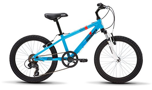 Diamondback Bicycles Octane 20 Youth 20' Wheel Mountain Bike, Blue