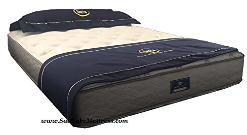 Amazing Deal Perfect Sleeper Concierge Suite Plush Mattress Only (Queen)