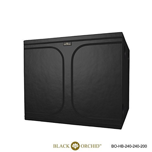Black Orchid 300 x 150 x 200cm Hydro-box review