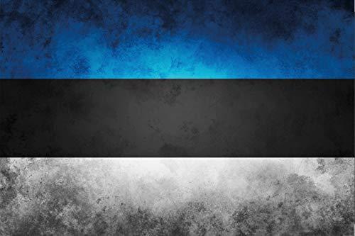FS Land Fahne Estland National Flagge Blechschild Schild gewölbt Metal Sign 20 x 30 cm