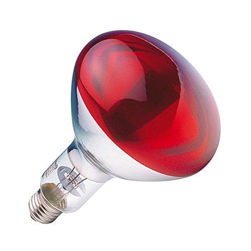 GE LIGHTING 250 W ampoule réflecteur infrarouge Hardglass Ruby (GE 91391)