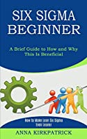 Six Sigma Beginner: How to Make Lean Six Sigma Even Leaner (A Brief Guide to How and Why This Is Beneficial)