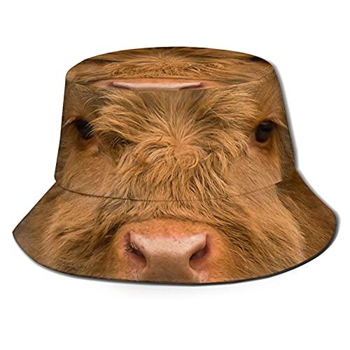 Süßes Kalb! Highland Kuh Schottische Highlands Sonnenhut Bucket Style Herren Damen Faltbarer Fischerhut Strandhut Sonnenschutz