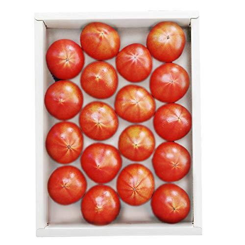 おかざき農園 リサ・フルーツトマト 化粧箱入り 約1kg トマト フルーツトマト 高糖度 国産 高知